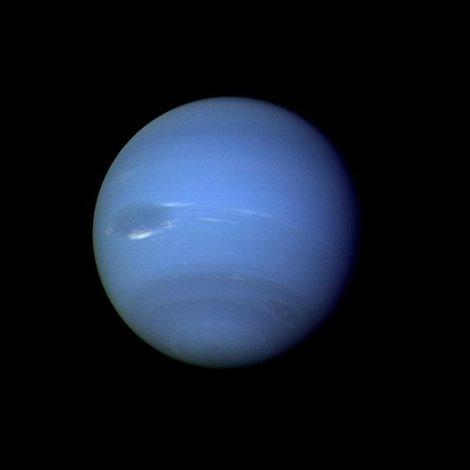 neptune525