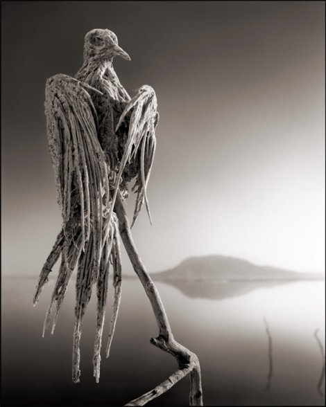 killer-lake-bird-statues-2