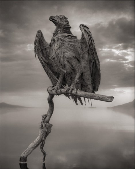 killer-lake-bird-statues-3
