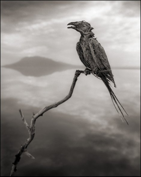 killer-lake-bird-statues-5